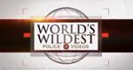 World's Wildest Police Videos