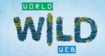 World Wild Web