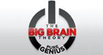 The Big Brain Theory