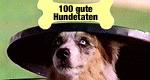 100 gute Hundetaten